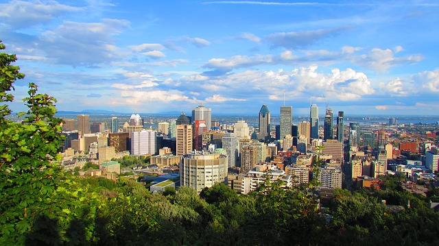 MS Excel Services in Montreal